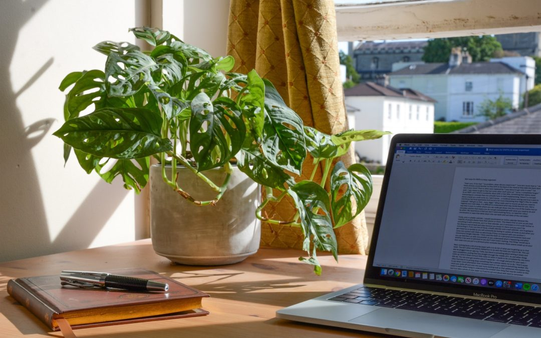 The Productivity Paradox: How to Make WFH More Productive Than The Office